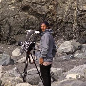 Alessio Saraifoger