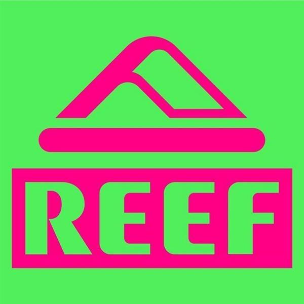 Reef | Image credit: Reef